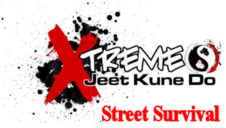 Jeet Kune Do Street Fighting, Athens, Greece