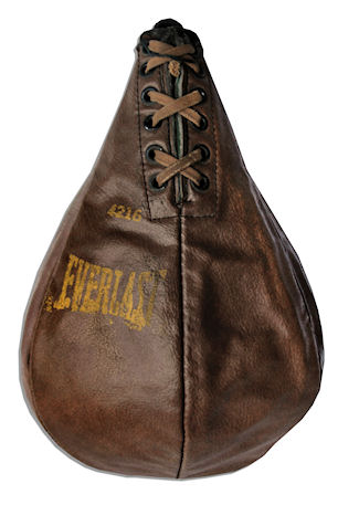 Sijo Bruce Lee's Speed Bag