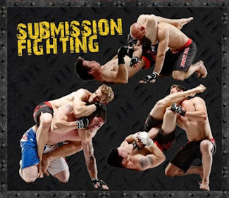 Submission Fighting
